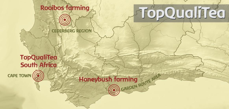 topqualitea-map.jpg